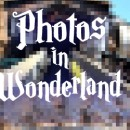 Photos in Wonderland banner.