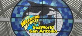 SeaWorldAgain