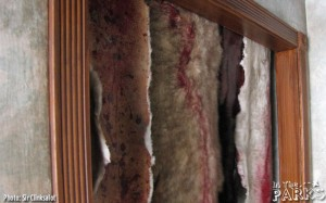 Animal Pelts