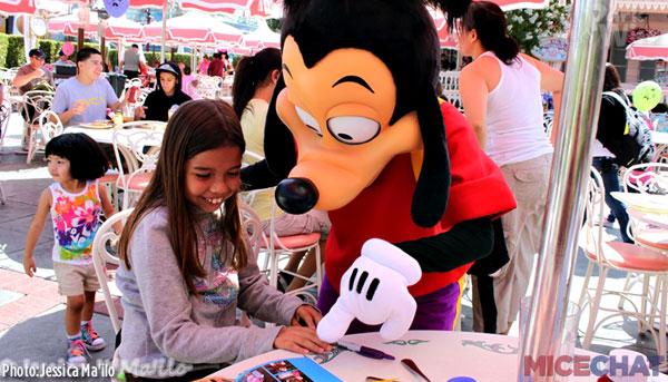 Micechat Features Park Wise Walt Disney World Park