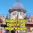 TangledToilets