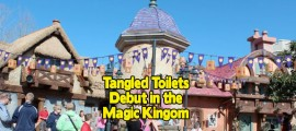 TangledToilets