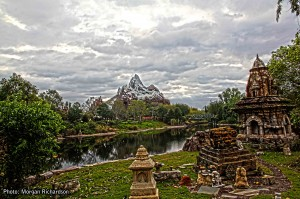 Animal Kingdom 3