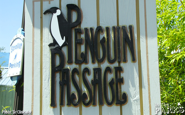 The African Penguins are always a favorite.