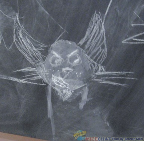 Drawings on the blackboard