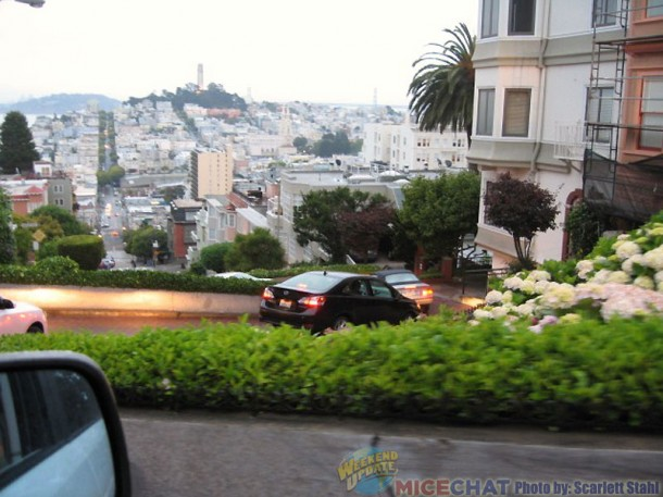 Staring down Lombard Street, called the crookedest (most einding) street in the world.