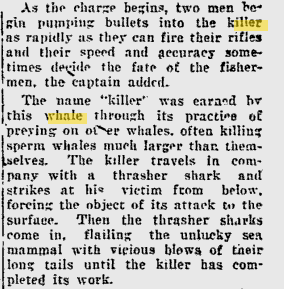 1927 news article about Orca hunting