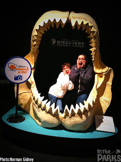 In the jaws of a Megaladon shark.