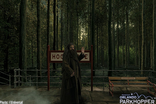 Hagrid-at-Hogsmeade-Station
