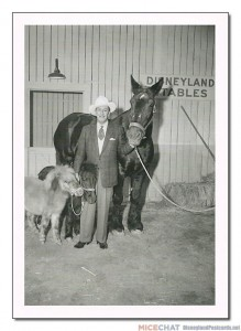 """Before Disneyland was completed, Walt Disney acquired some livestock for the park, stabling the horses at the Disney Studio in Burbank. He had always been intrigued by stories of America's frontiersman and cowboys, and felt that real horses and mules would add much to the atmosphere of his Frontierland."""