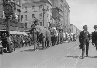 Circus Parade, Unknown Date