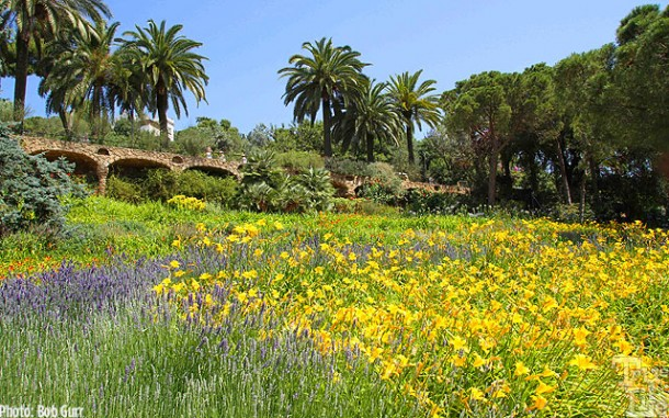 Parc Guell's mountain park is a graced with beautiful flower gardens