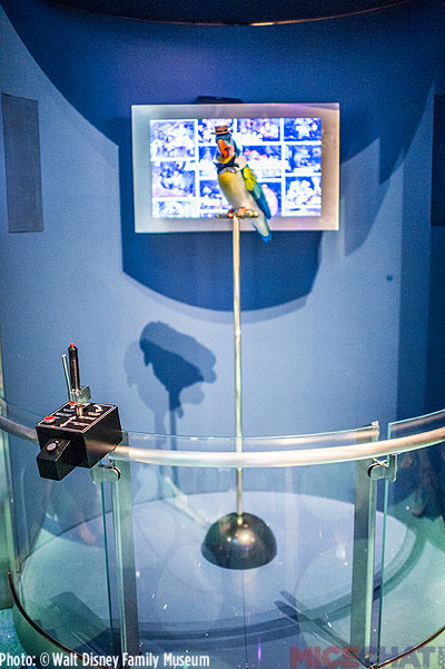 WDFM_AA-Bird-Exhibit_02
