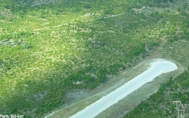 Camps have hard dirt runways placed several miles distant from camps