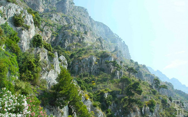 Trees and flowers create a dramatic cliff hanging gardens.
