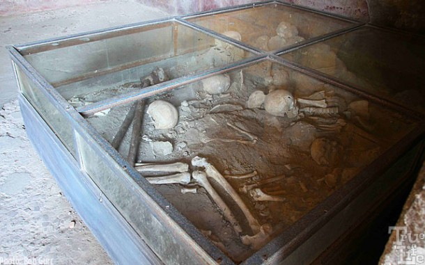 Actual bones are preserved as they were found during excavations.