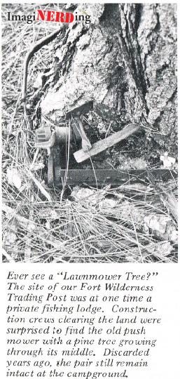 lawnmower-tree-09-02-1972-eyes-ears