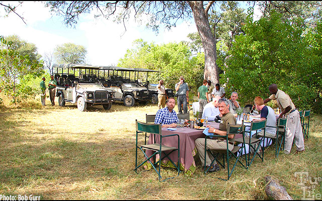 An elegant late afternoon lunch is served picnic style