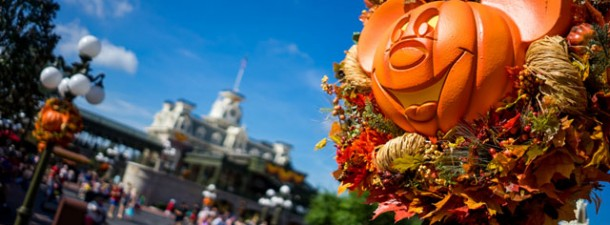 world   halloween arrives at the magic kingdom   news and photos
