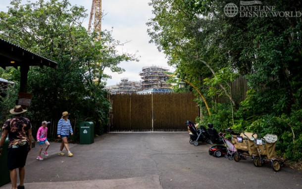 Near the entrance to Rainforest Cafe, you can see a lot of the work being done on Pandora.