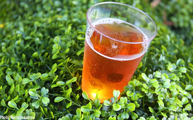 The Boysenberry Hard Cider