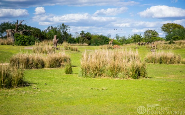 Kilimanjaro Safaris is still one of the most impressive Disney attractions.