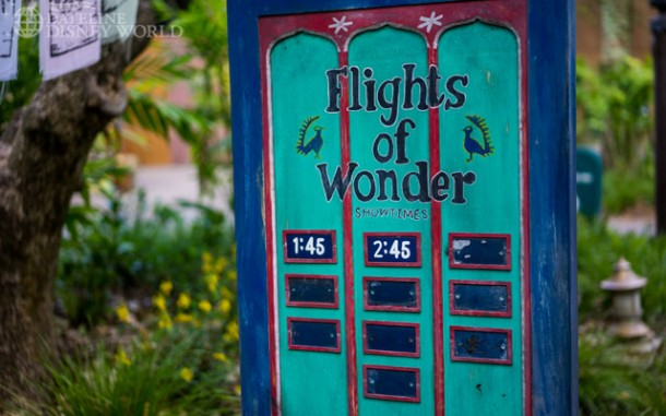Flights of Wonder is back on schedule.