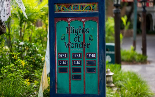 Flights of Wonder is back to having a full show schedule.