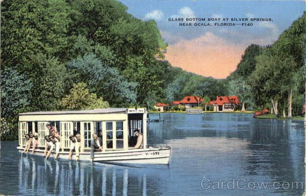 Silver Springs Florida antique post card