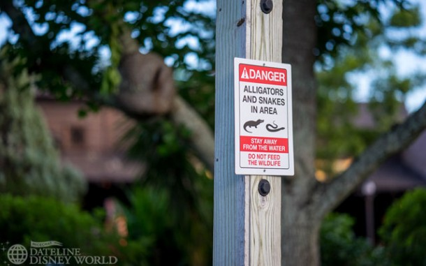 Another alligator/snake sign near the Rivers of America.