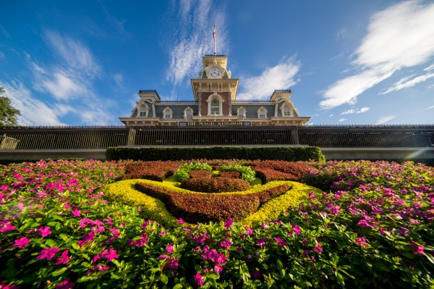 Magic Kingdom Mickey Floral