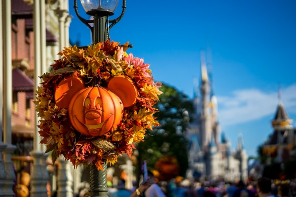 The famous Mickey pumpkins are out on Main Street once again.