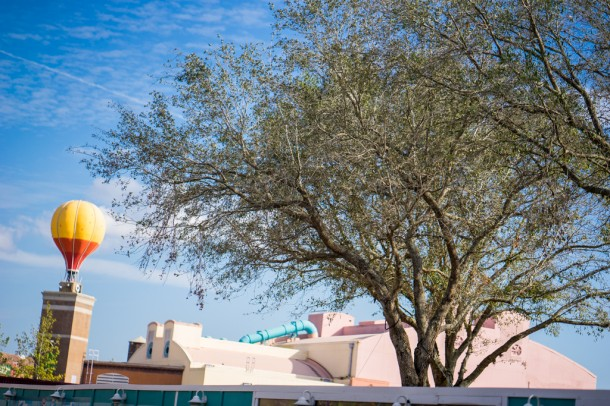 New giant trees have been planted at the end of Pixar Place to draw attention away from Toy Story Land and Star Wars Land construction.