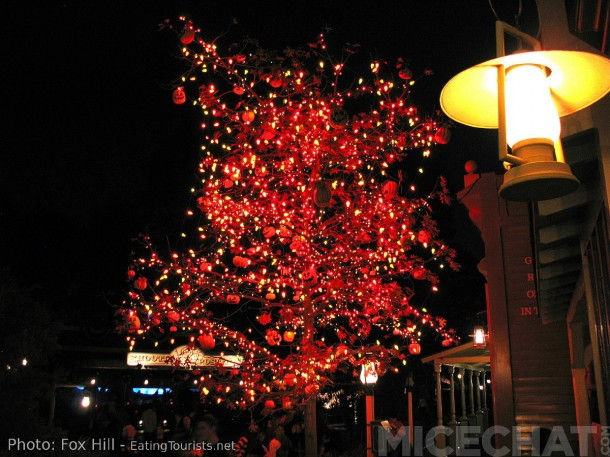 "The Beautiful ""Halloween Tree"" in Frontierland"