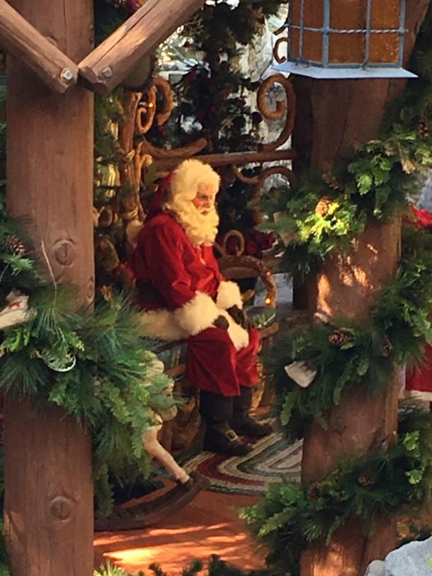 11-15-16-Santa-Redwood
