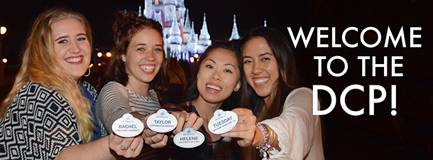 the Tparty in front of the Castle at Walt Disney World